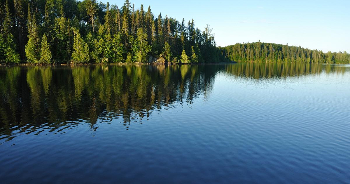 Les micro-organismes des lacs affectés par les pressions climatiques et humaines
