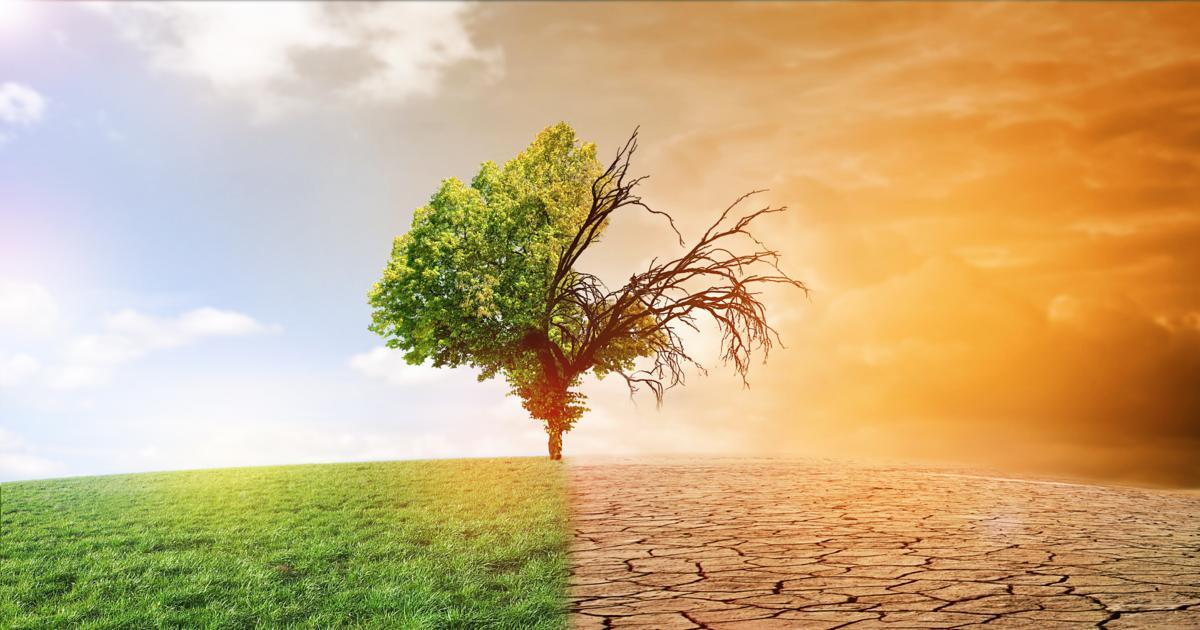 Une relance verte post-Covid pourrait enrayer le réchauffement climatique