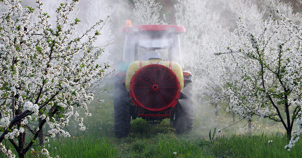 Une consultation sur l'élargissement des interdictions d'usage des pesticides