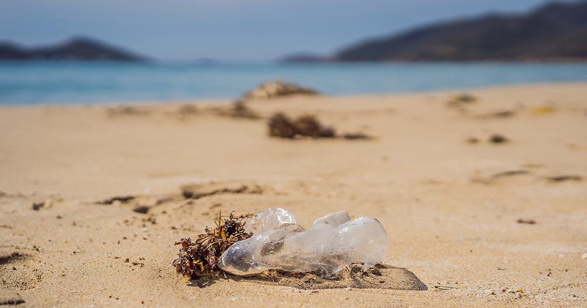 Déchets sur les plages: l'Union européenne en veut moins de 20 tous les 100 mètres