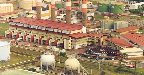 Guyane: la future centrale électrique de Larivot fonctionnera à la biomasse liquide