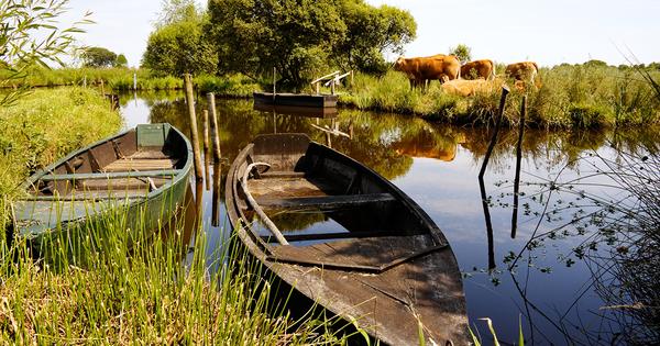 Loire-Bretagne: une vigilance de mise sur les pollutions diffuses et la morphologie des cours d'eau