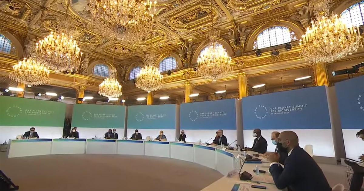 Biodiversité et climat: Emmanuel Macron à la relance