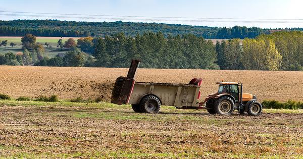Amendements organiques: le recul de l'élevage compromet les ambitions françaises