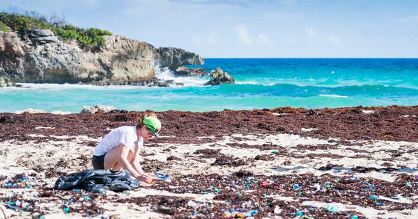 Plastiques en mer: un problème de taille (2/2)
