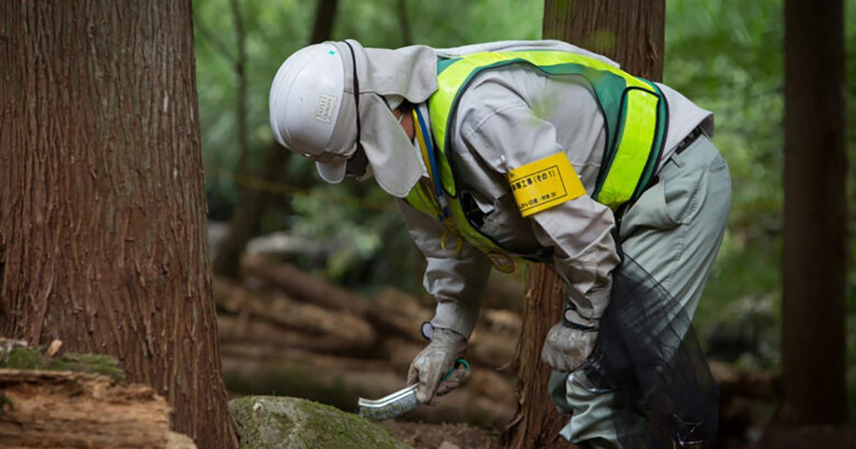 Fukushima: dix ans après la catastrophe nucléaire, les risques demeurent