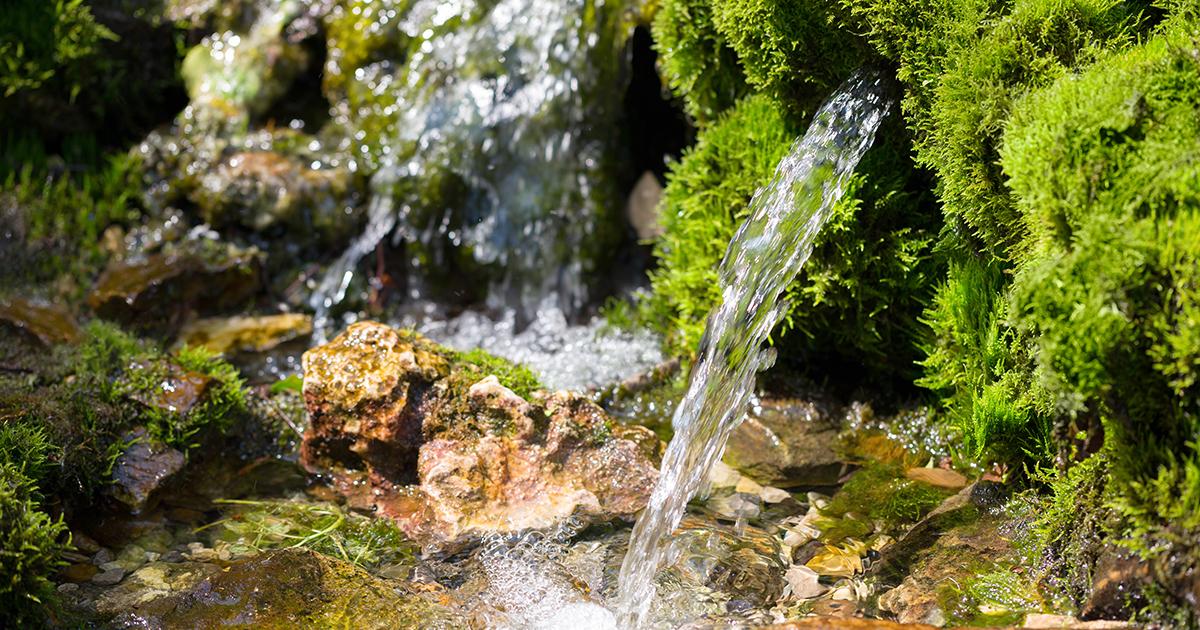 La juste valeur de l'eau: une définition à réalités multiples