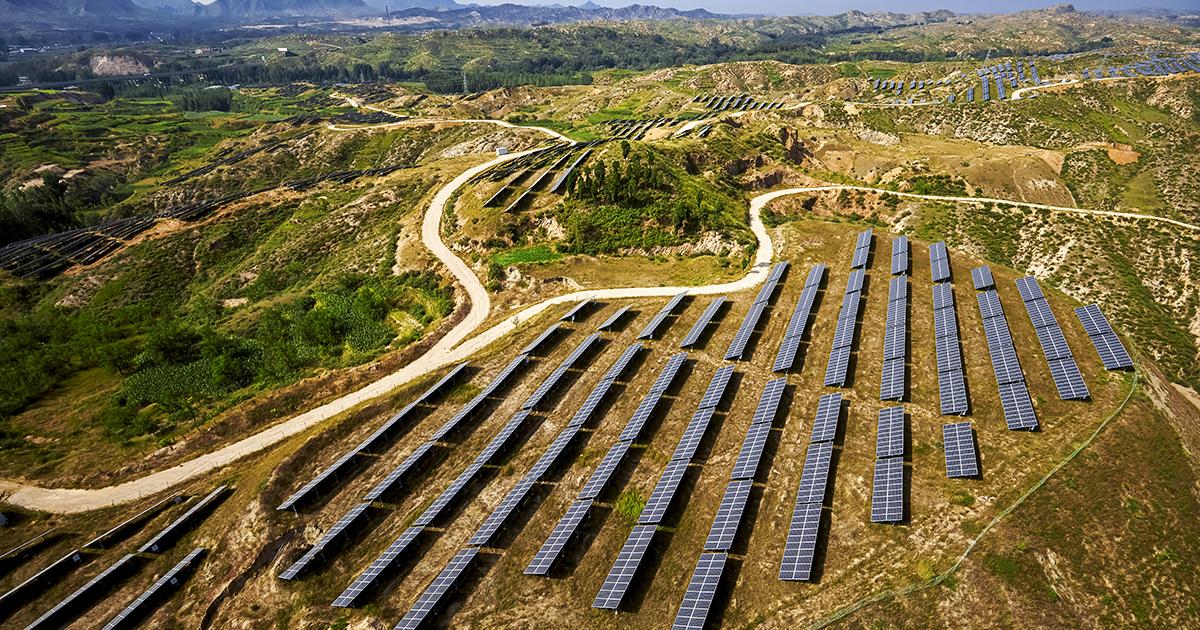 Parcs photovoltaïques et biodiversité: de premiers résultats non conclusifs