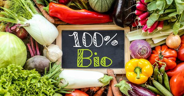 Agriculture bio en Europe: cap vers 25% de la surface agricole d'ici 2030