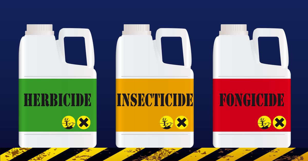Pesticides: le risque de perturbation endocrinienne mal pris en compte dans les procédures d'évaluation?