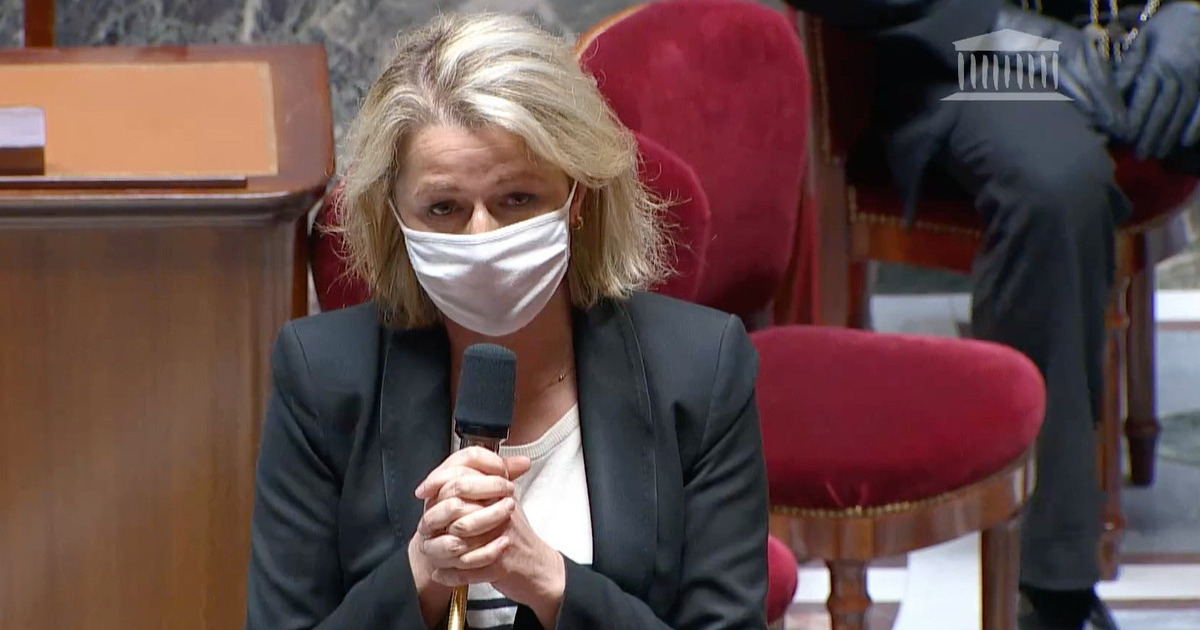 Loi climat au Sénat: «Certains articles s'attaquent au sujet par le petit bout de la lorgnette»