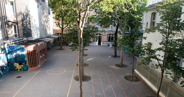 La pollution de l'air des cours des écoles parisiennes est inférieure à celle des rues adjacentes