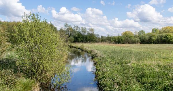 Bonne qualité des masses d'eau: le bassin Artois-Picardie face à un défi de taille