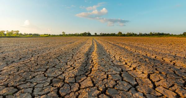 Tension sur l'eau: le ministère de l'Agriculture souhaite une gestion décentralisée lors de sécheresse