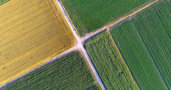Une nouvelle politique agricole commune aux ambitions limitées