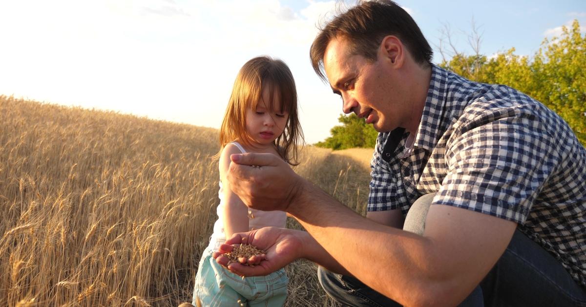 Pesticides et santé: de nouveaux liens établis chez les agriculteurs et leurs enfants