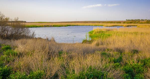 Loi climat et résilience: les compromis et consensus concernant l'eau