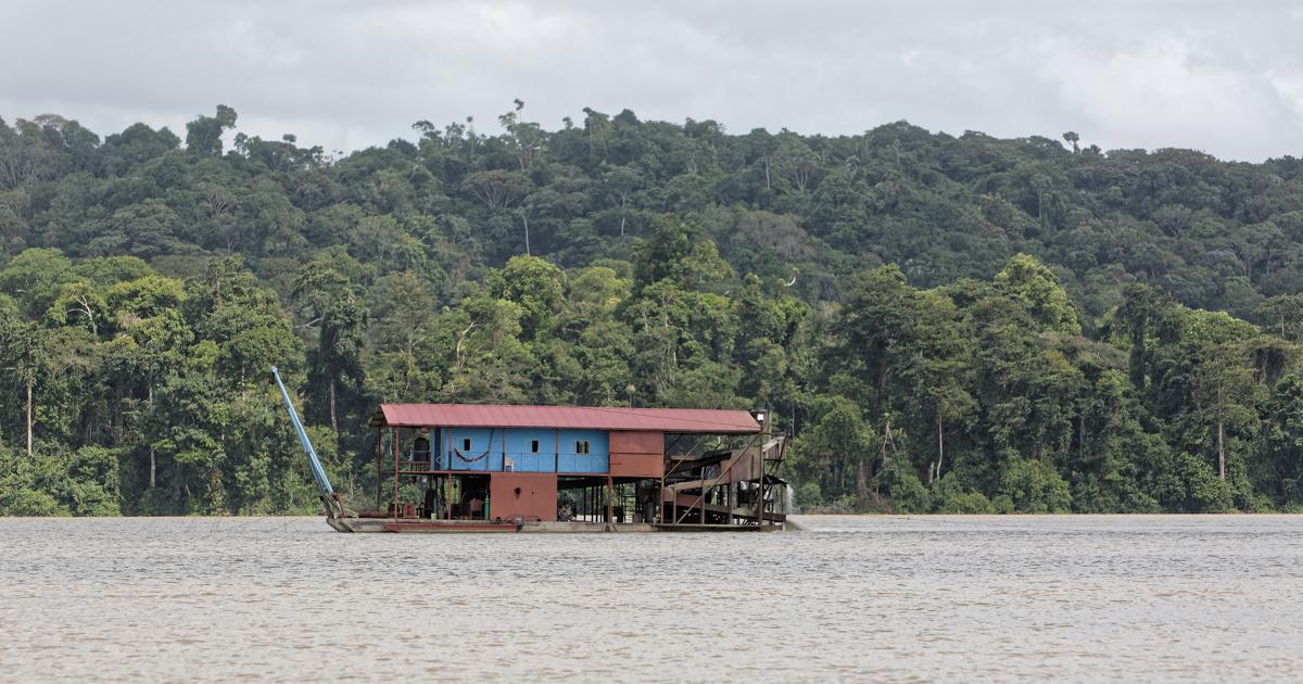 44 propositions pour limiter l'orpaillage illégal en Guyane