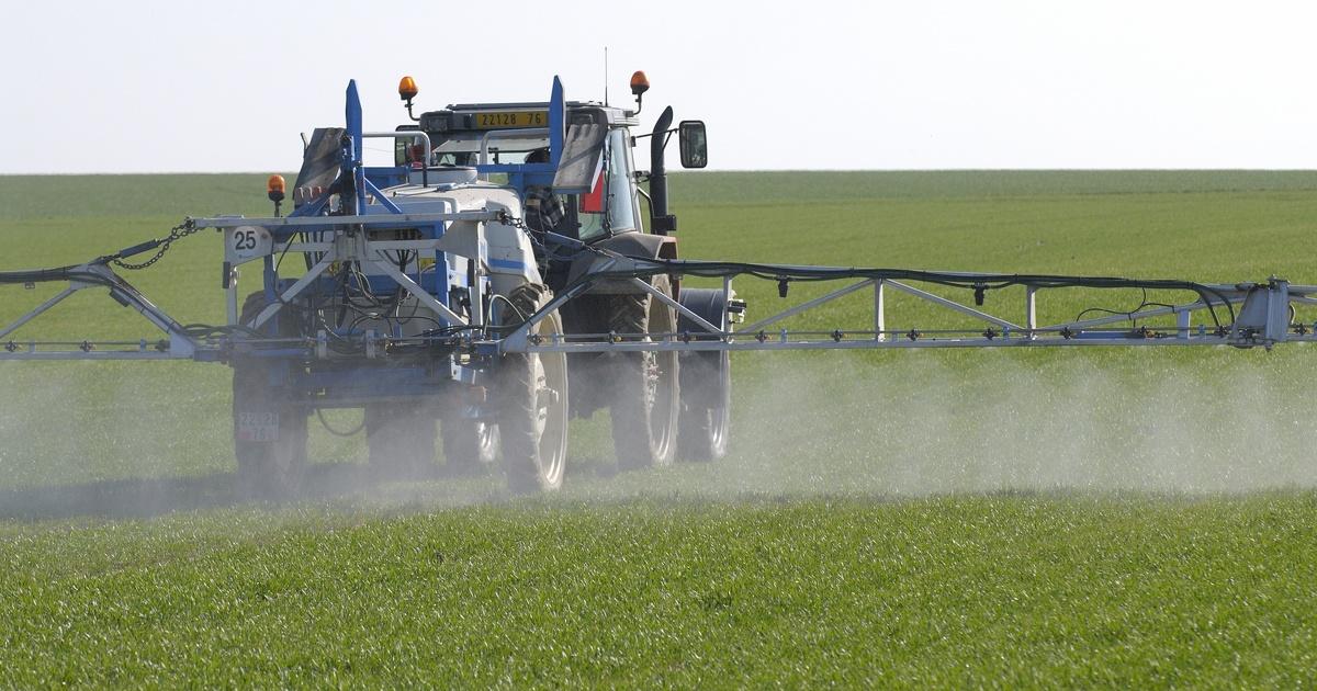 La vente des pesticides en France en hausse de 23% en 2020