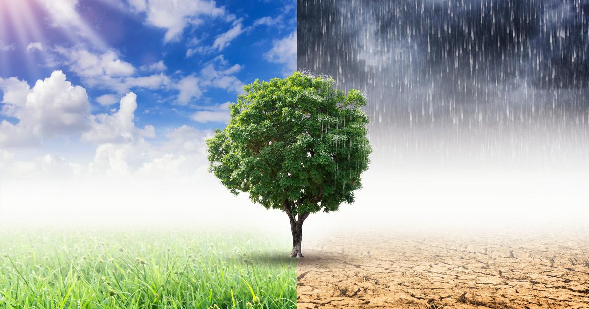 Rapport du Giec: le réchauffement climatique peut encore être atténué