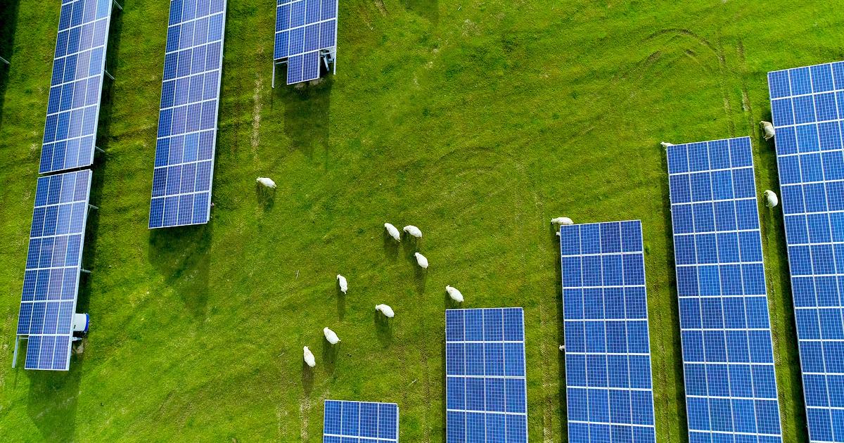 Loi climat: de nouvelles dispositions de soutien aux énergies renouvelables