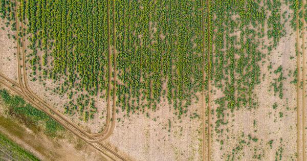 Partage de la ressource: le Varenne agricole de l'eau précise son cadre de réflexion