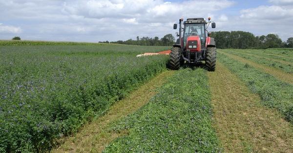 Les conditions pour que l'agriculture biologique devienne majoritaire
