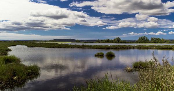 L'étang de Berre se dote (enfin) d'une feuille de route pour sa réhabilitation