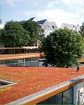 Sopranature®, solutions pour toitures végétalisées du groupe SOPREMA