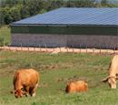 Photovoltaïque sur bac acier : Centrosolar innove pour la rentabilité de vos installations