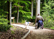 Espaces naturels, place aux Sentiers pour tous de l'ONF