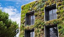 Végétalisation des toits et façades : un formidable outil urbanistique qui défend la biodiversité