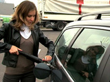 Bientôt des véhicules automobiles roulant aux déchets ?