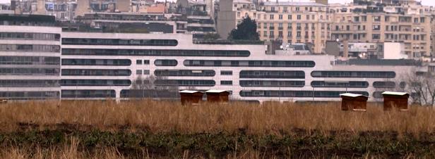 Le centre commercial beaugrenelle accueille la plus grande toiture v g talis - Le centre beaugrenelle ...