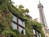 Le végétal à la conquête de la ville