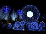 Illuminations de Noël : le gaspillage d'énergie se réduit