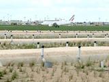 L'aéroport de Paris-Orly inaugure un marais filtrant pour le traitement des eaux de ruissellement