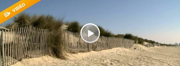 Erosion du littoral : l'Homme contraint de se plier aux règles de la nature