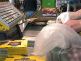 Sacs plastique biodégradables, une réelle avancée pour l'environnement ?