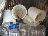 La fin des gobelets en plastique : une fausse bonne solution ?