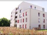 Label E+C- : la nouvelle réglementation du bâtiment se construit sur le terrain