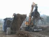 De la vigne pour alimenter les centrales biomasse ?