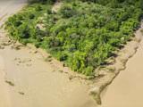 Biodiversité :  l'Ile Nouvelle, un morceau de terre en pleine renaissance