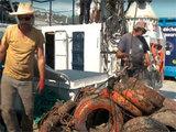 Des pneus pour favoriser l'écosystème marin : la fausse bonne idée