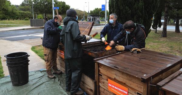 Le compostage collectif de quartier, pas si facile