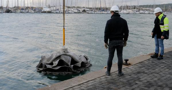 Les récifs artificiels sont-ils vraiment bénéfiques pour l'environnement?