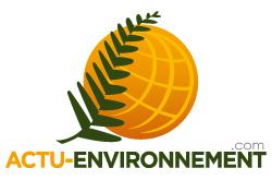 Autorisation environnementale: le Conseil d'Etat précise les règles contentieuses applicables