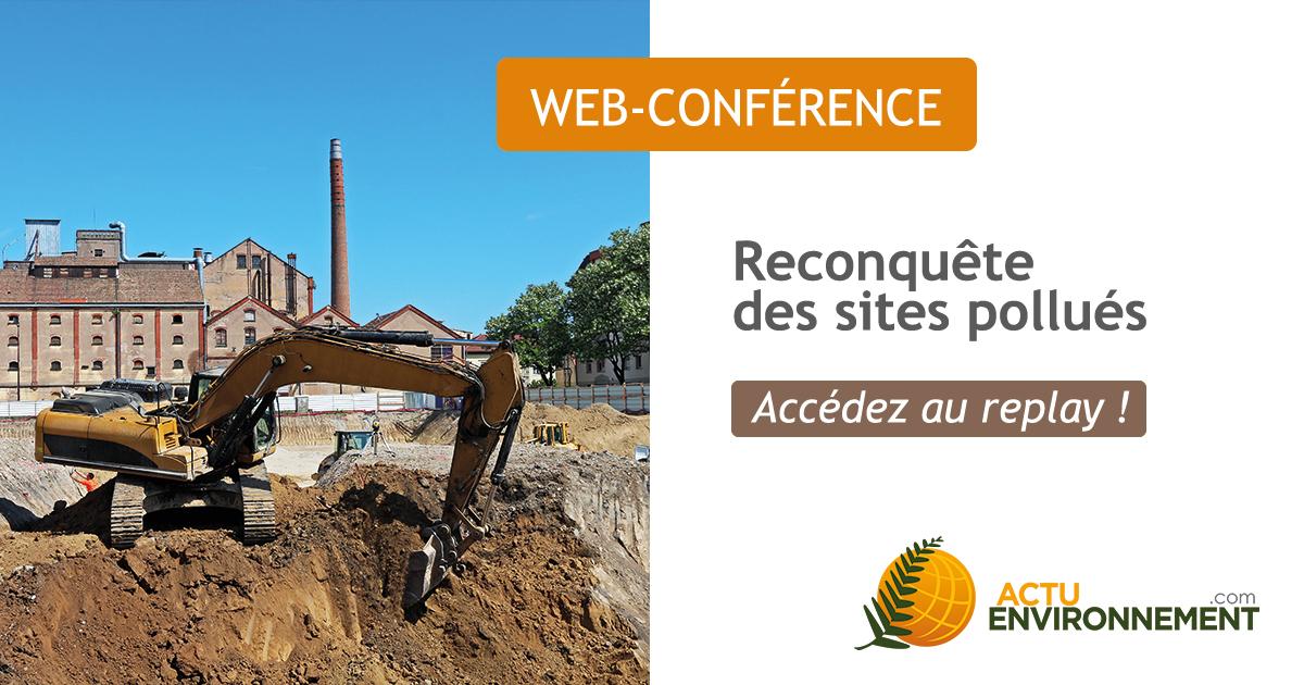 thumbnail web-conference
